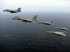 F-14 Tomcats, these Cats struck cold shivers up the spine of many an enemy aggressor !!