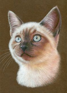Quirky Realistic Drawings by Karen Hull: A Gallery of Cute Whimsical Art. Step by step tutorial.