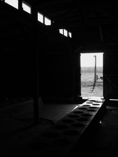 Inside a wooden latrine barracks at the BIIa sector of the Birkenau camp.