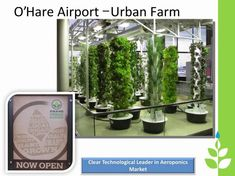 JP - O'Hare Airport,using the Juice Plus Tower Garden to benefit travelers with fresh organic produce in their restaurants.Ask how to put one in your life.skygoose22@live.com