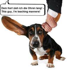 The German expression: Jemandem die Ohren lang ziehen - Means in English: To teach someone manners, to reprimand someone, to rebuke someone (Literal translation: pull s.o. by the ears)