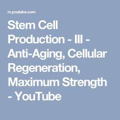 Stem Cell Production - III - Anti-Aging, Cellular Regeneration, Maximum Strength - YouTube