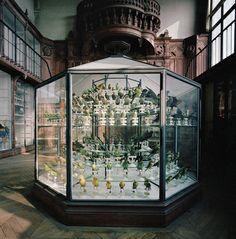 Richard Ross, Museum National D'Histoire Naturelle | Paris, France 1982