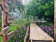 Cantiknya Kebun di Baan Rai i Arun, Kapoe, Ranong, Thailand Garden Cottage, Cottage Homes, Home And Garden, Green Landscape, Landscape Design, Garden Design, Garden Fence Art, Glass Garden, Bamboo Architecture