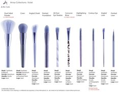 Wildly Beautiful - Violet Color Collection