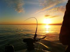 fishing rod sunset