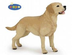 The Labrador from the Papo Dogs collection - Discounts on all Papo Toys at Wonderland Models.    One of our favourite models in the Papo Farm range is the Papo Labrador.    Papo manufacture wonderful, amazingly accurate models of all sorts of toy figures, particularly dogs including this model of the Labrador which can be complemented by any of the items in the Farm World range.