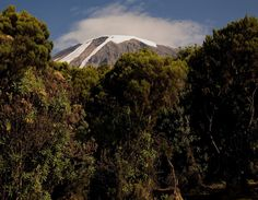 Mount Kilimanjaro is a beautiful Mountain and when climbing there is little chance of an eruption so you don't have to worry.