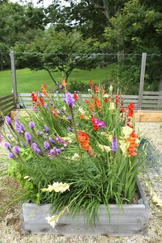 It Comes Naturally: Advice On Growing An Organic Garden ** You can get additional details at the image link. #Landscaping