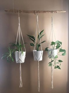 Minimalist Macrame Plant Hanger//Modern Macrame//Macrame Plant Holder DIY Hanging Plant Holder indoor and outdoor . Handmade Home Decor, Diy Home Decor, Home Decoration, Decorations, Macrame Plant Holder, Macrame Plant Hangers, Plant Holders Diy, Decoration Plante, Hanging Planters