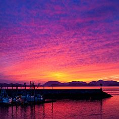 Beginner's guide to Alaska | The ultimate dream vacation