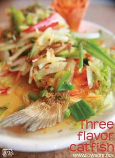 Put a new spin on with these recipes for catfish spring rolls, tomato catfish and three flavor catfish from Fawn's Asian Cuisine in Des Moines, For more outdoor-inspired recipes, check out Iowa Outdoors magazine. Catfish Recipes, Wild Game Recipes, Wild Edibles, Recipe Boards, Spring Rolls, Venison, Fish And Seafood, Iowa, Spin