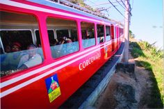 trem do corcovado - Pesquisa Google