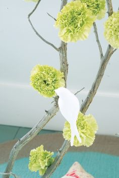 Bucolic carnations