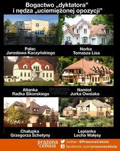 Homeland, Good To Know, Victorious, Life Lessons, Labrador Retriever, Lol, Humor, Memes, Funny