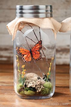 This oversized glass jar takes flight with a beautiful monarch butterfly. I'd use real moss and such
