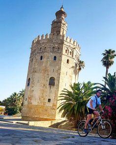 Torres con alas de oro  que sueñan distancias. Calles con sombras de siglos  y nardos de plata.  Sevilla - Rocío Jurado  #igerssevilla #igersspain #igersandalucia #instagramers #somosinstagramers #tumejortú