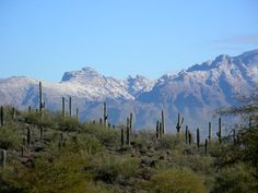 These mountains are so beautiful!and use to be out my backyard..The Santa Catalina Mountains, Tucson, Arizona