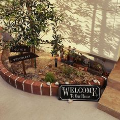 Apartment Balcony Garden, Apartment Balconies, Garden Paths, Garden Design, Succulents, Cottage, Exterior, Patio, Flowers