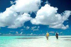Desroches Island, fly fishing, stay, sea, sun Seychelles Honeymoons, Seychelles Hotels, Fly Fishing, Travel Destinations, Addiction, Clouds, Island, Sea, Places