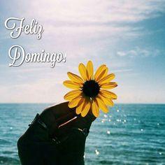 Feliz Domingo Que todos tengan un estupendo Día.  #panama #sunday #flowers