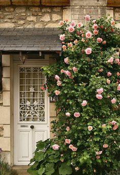 Love the door and the little hood. And of course the roses too!