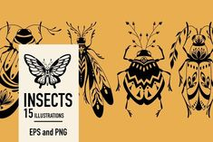 Insects. Graphic clipart + patterns. by hello Xeni on @creativemarket