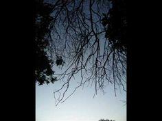 Philip Glass: String Quartet no. 5, 5th movement.
