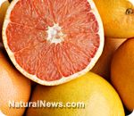 Grapefruit compound could treat diabetes, lower cholesterol and produce Atkin�s diet benefits without dieting