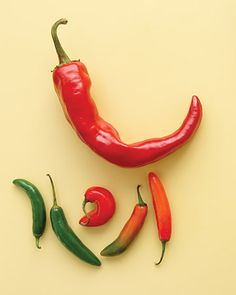 "Slide show of 38 ""Chile Pepper Recipes"" - Summer Seasonal Produce Recipe Guide from Martha Stewart."