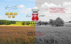 Comandon, the Art of Assemblage, Blending, Color Photography, Black and White Photography, Cognac Landscape, Cognac Scenery, Vineyards.