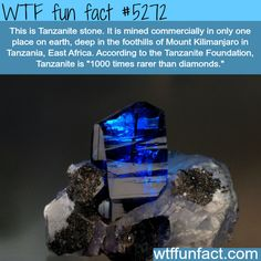 Interesting Random WTF Facts To Blow Your Mind lustig 10 Psychological Tricks For An Easier Life Wow Facts, Wtf Fun Facts, True Facts, Funny Facts, Random Facts, Crazy Facts, Dumb Facts, Random Stuff, Bizarre Facts