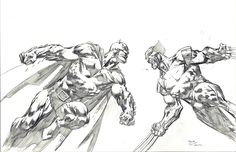 Batman vs Wolverine by David Finch, in DavidT's Commission Comic Art Gallery Room - 1006549