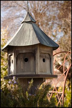 Cambria bird house.