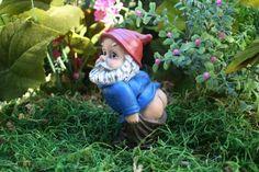 Mooning Gnome Funny Rude Custom Garden Gnome. $99.99
