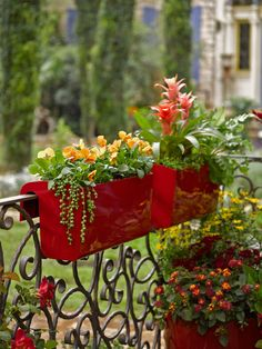 Self-Watering Balcony Railing Planter Easy-care balcony garden railing planters in bold colors and a high-gloss finish. Self-watering for reduced maintenance and plants that thrive. Balcony Railing Planters, Garden Railings, Hanging Planters, Wall Planters, Concrete Planters, Unique Gardens, Amazing Gardens, Beautiful Gardens, Balustrade Balcon