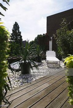 Stock Photo : Deck and pebble roof terrace with sun lounger and potted yuccas (Yucca), August. Part of a series, image 2 of 9 Wood Pergola, Pergola Plans, Diy Pergola, Pergola Kits, Rooftop Terrace Design, Wooden Patios, Pergola Curtains, Retractable Canopy, Patio Roof