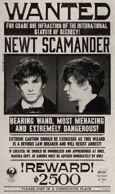 newt scamander wanted poster fantastic beasts - Here you can learn the good, the bad and the ugly of the magical world's most prominent figures. Today we will focus on famous magizoologist Newt Scamander. Harry Potter World, Harry Potter Poster, Magia Harry Potter, Theme Harry Potter, Mundo Harry Potter, Harry Potter Tumblr, Harry Potter Universal, Harry Potter Spells, Harry Potter Halloween