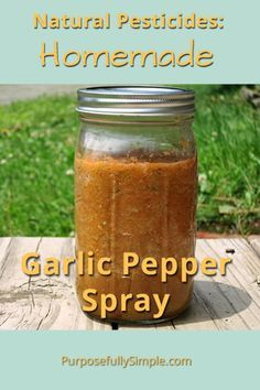 Natural-Pesticides-Homemade-Garlic-Pepper-Spray-Purposefully-Simple