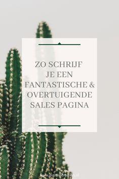 Wanneer je een online bedrijf hebt, zijn sales pages onmisbaar. In dit artikel leg ik uit wat een sales page is, waarom elke blogger en ondernemer een sales page nodig heeft en hoe je een goede, overtuigende sales page maakt.