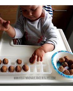 Kreatywne nauczanie: Układanie orzechów - Montessori