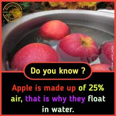 amazing fact 75 Wierd Facts, Wow Facts, Intresting Facts, Real Facts, Wtf Fun Facts, Crazy Facts, Funny Facts, Interesting Science Facts, Amazing Science Facts