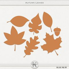 I'm very excited to announce that I have created the cutting files to go along with my Perfect Pumpkin Template Set! Leaf Silhouette, Silhouette Portrait, Silhouette Cameo, Silhouette Projects, Autumn Art, Autumn Leaves, Leaf Template, Templates, Yarn Crafts