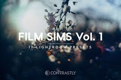 Film Sims Vol. 1 Lightroom Presets by Contrastly Shop on @creativemarket