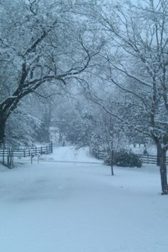 White Christmas in TN.