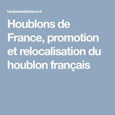 Houblons de France, promotion et relocalisation du houblon français