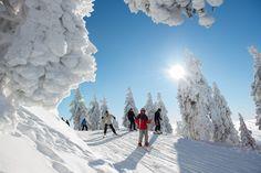 Winterzauber im Harz