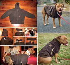 DIY Dog Coat Pattern Easy Video Tutorial
