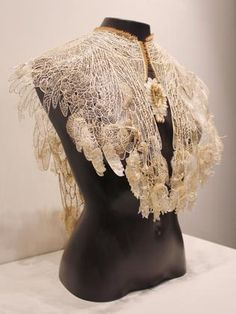 Judith Brown wins Waterhouse Natural Science Art Prize with lace cape creation