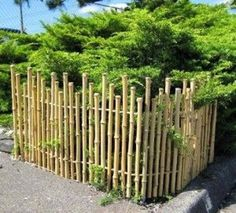 Natural Bamboo Fence Ideas for Your Garden. Not only an iron fence, concrete, or wood. Now natural bamboo fence is also a favorite of many, ranging from rural people to people who live in the ci. Small Backyard Gardens, Backyard Garden Design, Modern Fence, Modern Backyard, Fence Landscaping, Backyard Fences, Pool Fence, Bamboo Garden Fences, Bamboo Fencing Ideas